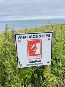 North_Coast_500_Whaligoe_Sign